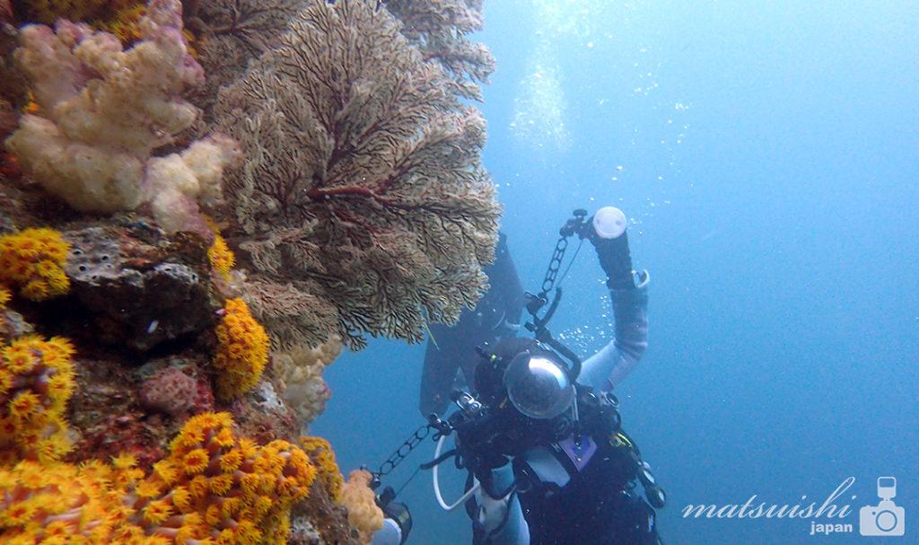 硫黄島ダイビング