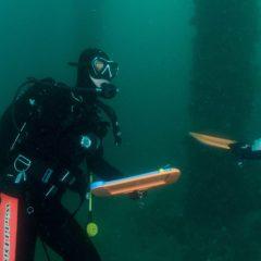 水中ガイド