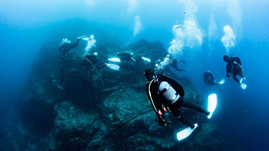 沈み瀬ダイビング